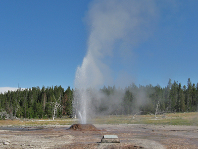Pink Geyser - Yellowstone - USA