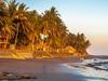 Playa El Zonte - La Libertad