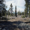 Polecat Creek Loop Trail
