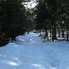 Pot Na Crno Jazero - Slovenia