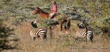 Private Ranches - Laikipia