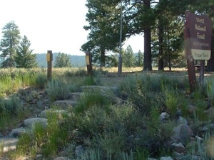 Prosser Ranch Group Campground