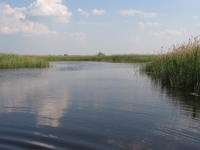 Péteri Lake