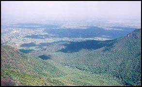Puliancholai