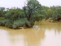 Paroo River