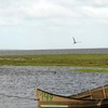 Lagoa Do Peixe National Park