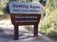Sequoia Quaking Aspen Campground