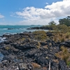 Rangitoto Island Shoreline - Auckland NZ