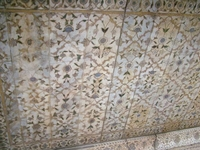 Rang Mahal Ceiling