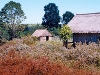 Ratanakiri Kiri