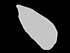Regional Map Of Tromelin Island
