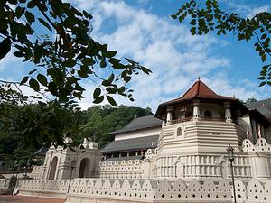 Sri Lanka Tour of 04 Days Photos