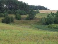 Reservation Staświńskie Łąki