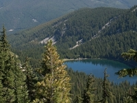 Coeur d'Alene National Forest