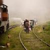 Ride A Train To Ella