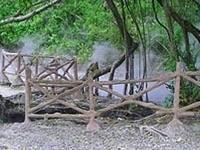 Rimbo Panti Nature Reserve