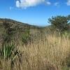 Rincon De La Vieja Volcano Trail