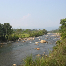 River In Manu National Park