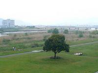 Yasu River