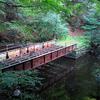 Rocky Glen State Park