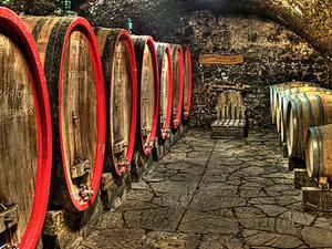 Romanian Vineyards and Cellars - 7 Days Tour Photos