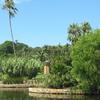 Pond And Gardens