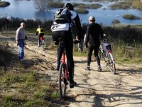 Royal Cycle Trail