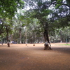 Ryewood Park Open Spaces - Lonavala - Maharashtra - India
