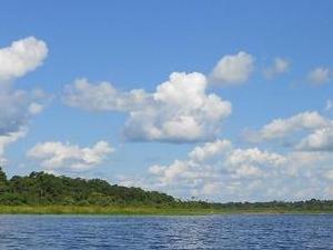 Tapiche Ohara's Reserve