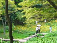 Rokkō Alpine Botanical Garden