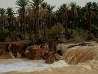 Wadi al-Rummah