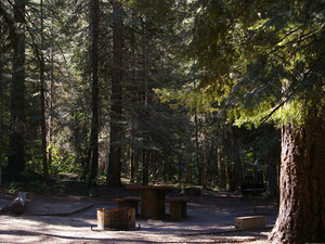 Sagehen Creek Campground