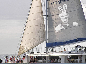 Sail Sensations Photos