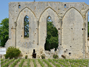 Small-Group St-Emilion Bike Tour from Bordeaux Including Wine Tastings and Lunch Photos