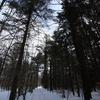Saint Lazare Atv Trail