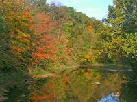 Salamonie River