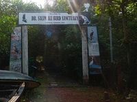 Dr. Salim Ali Bird Sanctuary