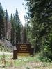 Tahoe Salmon Creek Campground