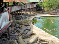 Samut Prakan Crocodile Farm and Zoo
