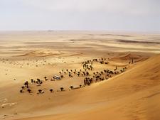 Sand Dune - Namib Desert