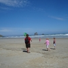 Sandfly Bay Beach View - Dunedin NZ