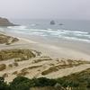 Sandfly Bay @ Dunedin - Otago NZ