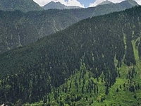 Sangla