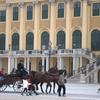 Front Of Schonbrunn Palace