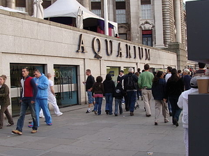 Skip the Line: Sea Life London Aquarium Photos