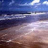Sea Rim State Park
