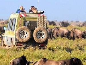 7 Day Safari in Lake Manyara, Serengeti and Tarangire Photos