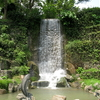 Shatin Park Waterfall