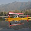 Shikara Boat - Srinagar J&K