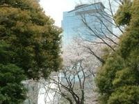 Shinjuku Central Park